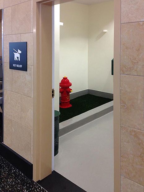 San-Francisco-Dog-Bathroom-Pet-Relief-Area-SFO
